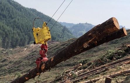 TimberEquipment Directory - Company Detail